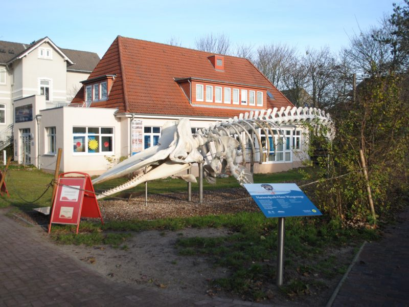 Nationalpark-Haus Wangerooge